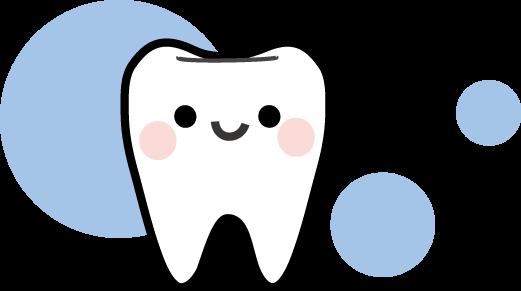 「歯 画像」の画像検索結果